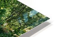 Monet style 2 HD Metal print