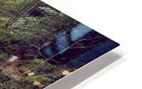 Torc waterfall in Killarney National Park HD Metal print