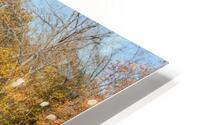 Grand River and Harpersfield covered bridge HD Metal print