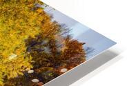 Arc de Treeomph HD Metal print