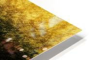 the Tree HD Metal print