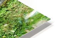 green4 HD Metal print
