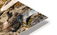 Cascading Falls HD Metal print
