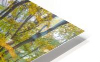 Colors of Nature apmi 1857 HD Metal print