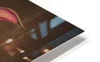 Etude Zen 8 d  HD Metal print