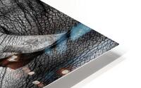 Rhinoceros HD Metal print