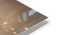 Buzzard HD Metal print