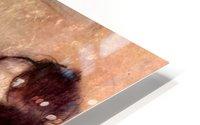 The violinist 1 by Degas HD Metal print