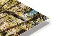 OCA 251 HD Metal print