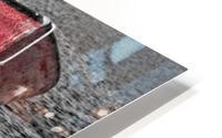 Red Dorries HD Metal print