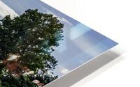 Reflections HD Metal print