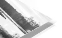 Cattails at Dawn HD Metal print