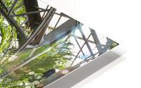 Urban Forests HD Metal print
