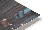 Enjoying the Snow  Caribou   HD Metal print