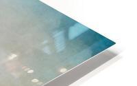 Semipalmated Plover HD Metal print