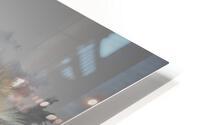 Lemurien HD Metal print
