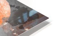 Flamant  HD Metal print