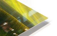 Green fields HD Metal print