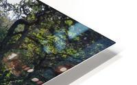 Dewerstone Woods HD Metal print