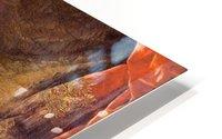Emmanuel Pinto HD Metal print