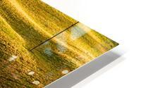 Toano 2 HD Metal print