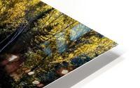 River Bed HD Metal print