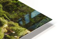 Ruckel Creek; Oregon, United States of America HD Metal print