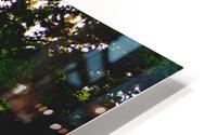 Beautiful Mural OKC HD Metal print