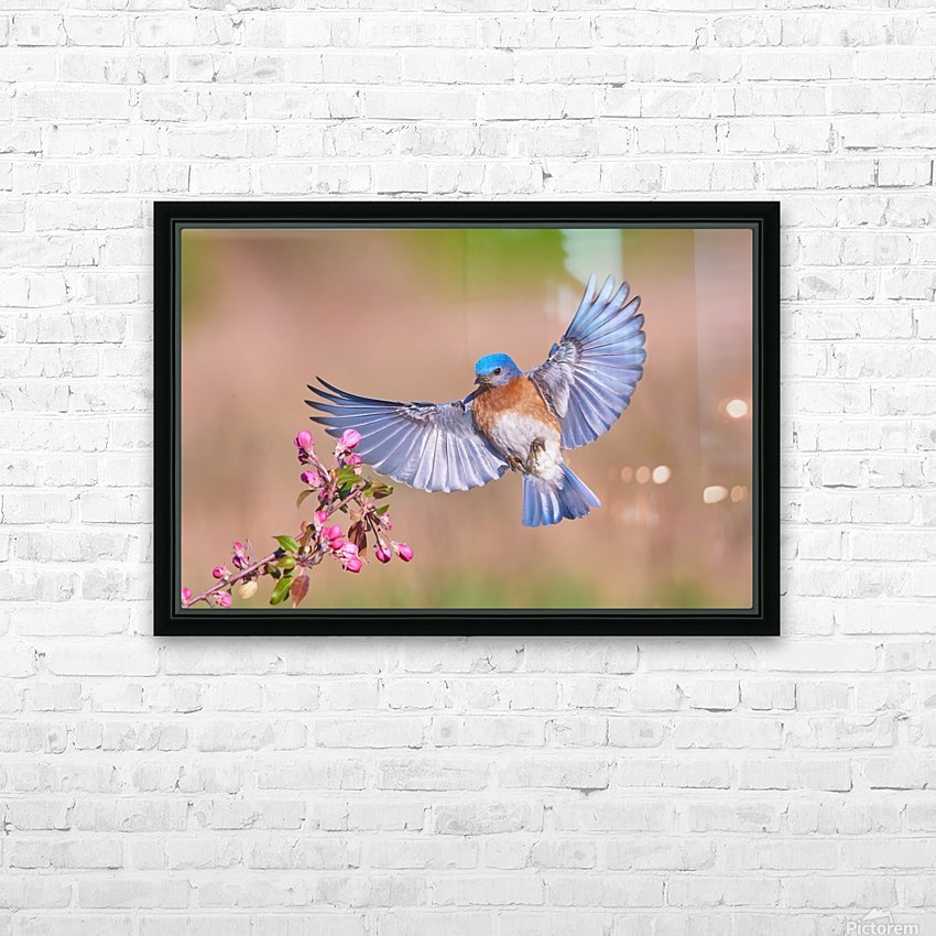 Colorful Spring HD Sublimation Metal print with Decorating Float Frame (BOX)
