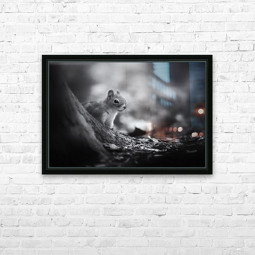 In the woods HD Sublimation Metal print with Decorating Float Frame (BOX)