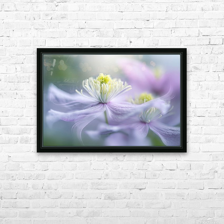 Sway HD Sublimation Metal print with Decorating Float Frame (BOX)