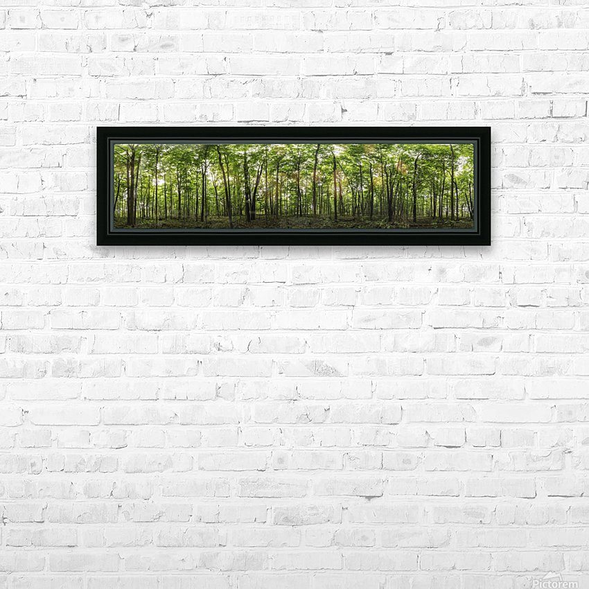 Panoramic image of a deciduous forest; Ontario, Canada HD Sublimation Metal print with Decorating Float Frame (BOX)