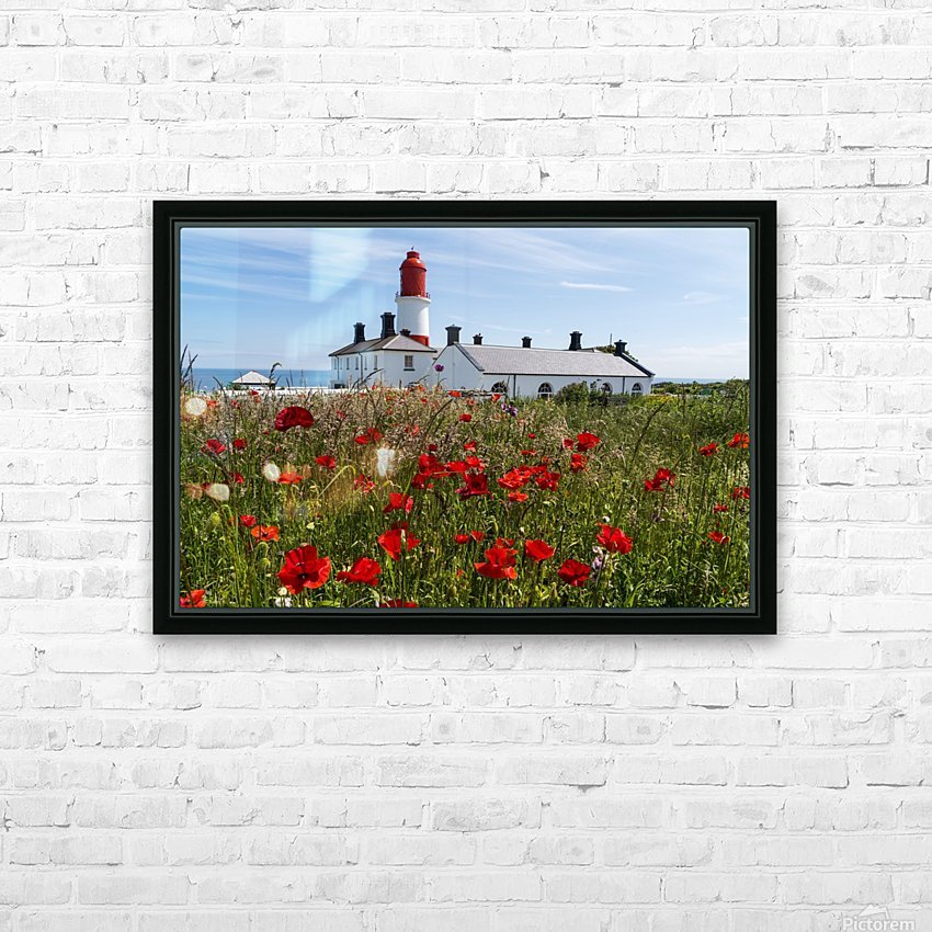 Souter Lighthouse with a field of red poppies in the foreground; South Shields, Tyne and Wear, England HD Sublimation Metal print with Decorating Float Frame (BOX)
