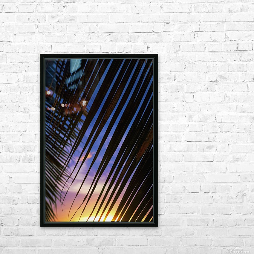 Close-up of silhouetted palm fronds with beautiful sunset color sky in the background; Honolulu, Oahu, Hawaii, United States of America HD Sublimation Metal print with Decorating Float Frame (BOX)