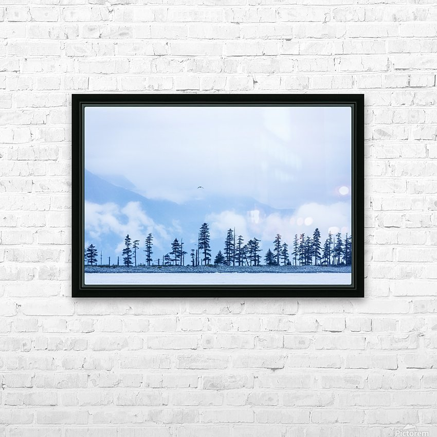 A bird flies above trees under a cloudy sky and fog on the coast of Resurrection Bay, South-central Alaska; Seward, Alaska, United States of America HD Sublimation Metal print with Decorating Float Frame (BOX)