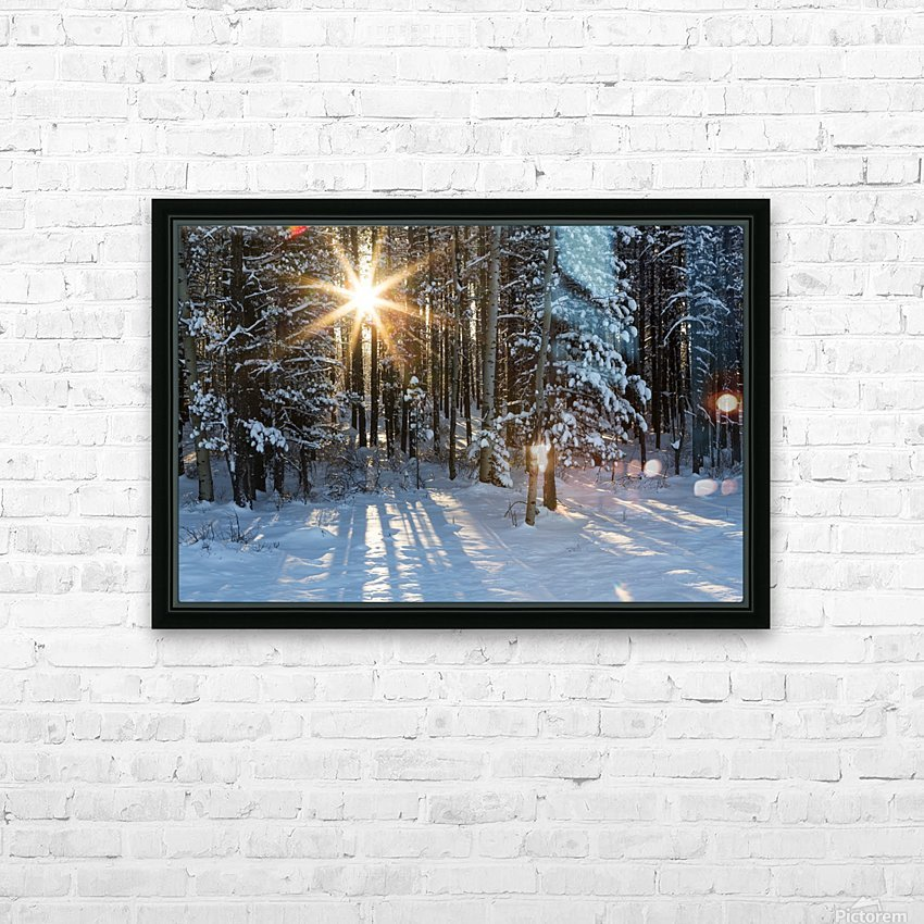 Sunburst coming through a snow covered forest; Kananaskis Country, Alberta, Canada HD Sublimation Metal print with Decorating Float Frame (BOX)