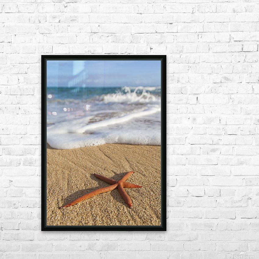 A red live Finger Starfish, also known as Linckia Sea Star, found along a sandy beach with white ocean tide washing up; Honolulu, Oahu, Hawaii, United States of America HD Sublimation Metal print with Decorating Float Frame (BOX)