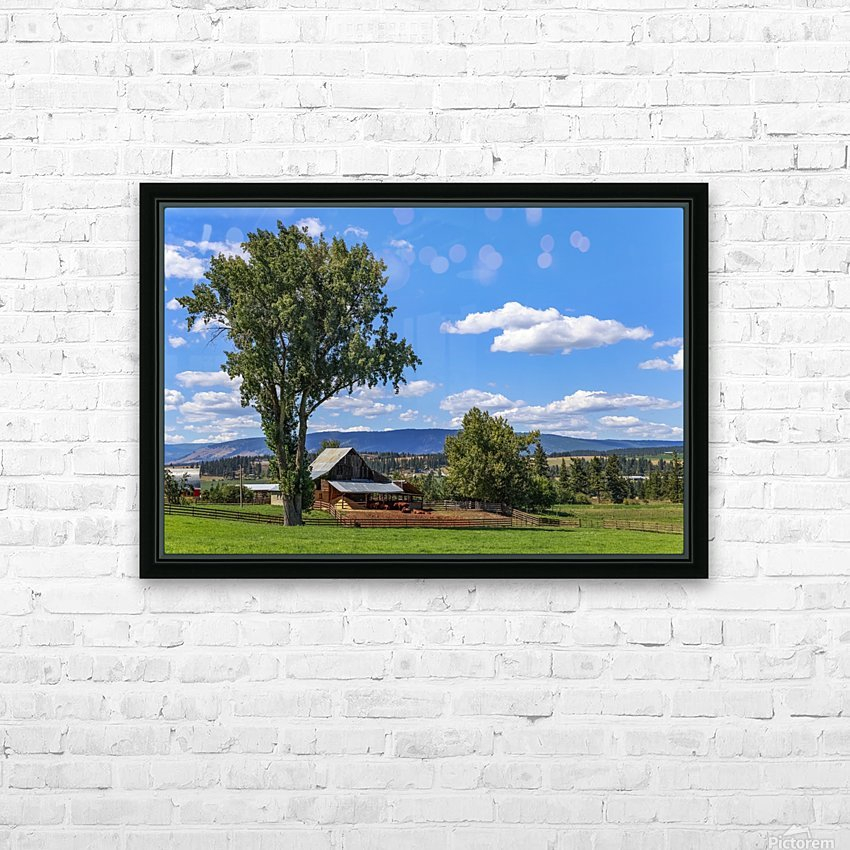 Beef cows rest in the shade of the barn roof under a blue sky with fluffy white clouds in the summer in the North Okanogan; British Columbia, Canada HD Sublimation Metal print with Decorating Float Frame (BOX)