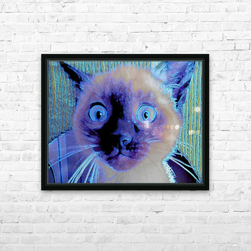 electric kitty HD Sublimation Metal print with Decorating Float Frame (BOX)