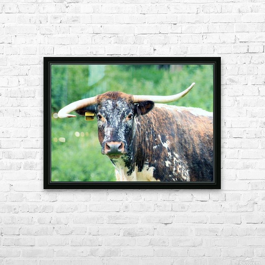 Horns HD Sublimation Metal print with Decorating Float Frame (BOX)