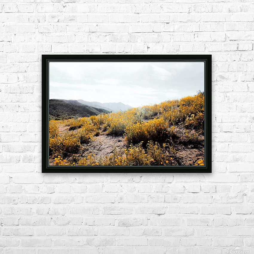 vintage style yellow poppy flower field with summer sunlight HD Sublimation Metal print with Decorating Float Frame (BOX)