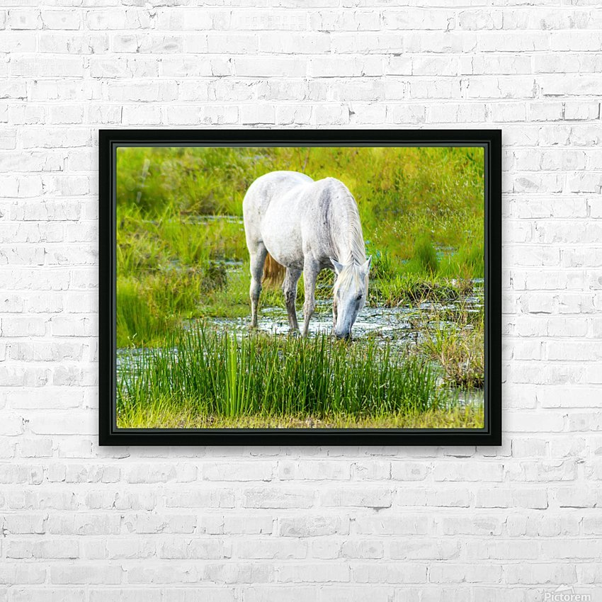 Wild Wetland Stallion HD Sublimation Metal print with Decorating Float Frame (BOX)