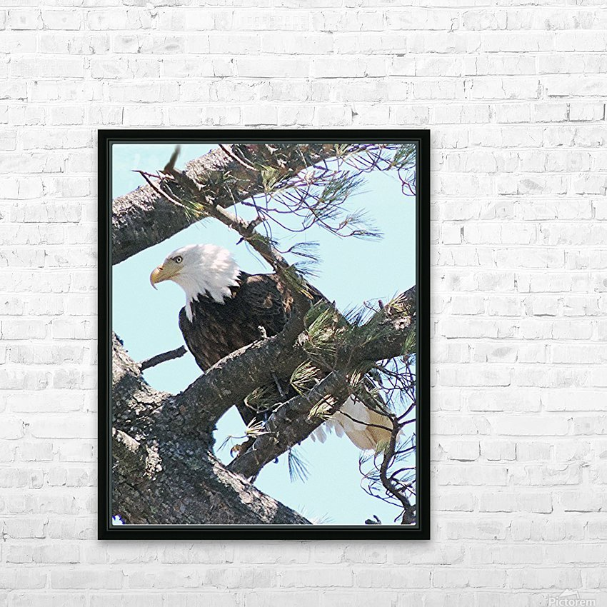 Watchful HD Sublimation Metal print with Decorating Float Frame (BOX)