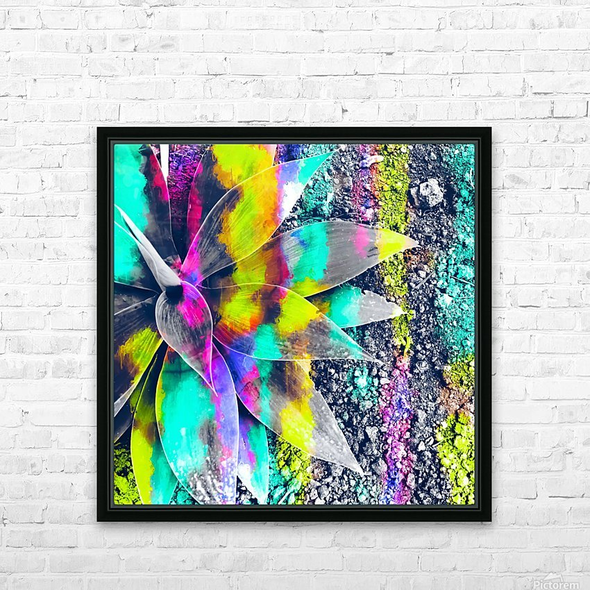 succulent plant with painting abstract background in green pink yellow purple HD Sublimation Metal print with Decorating Float Frame (BOX)