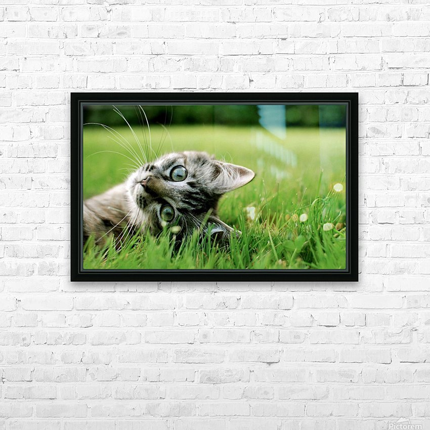 ucing HD Sublimation Metal print with Decorating Float Frame (BOX)