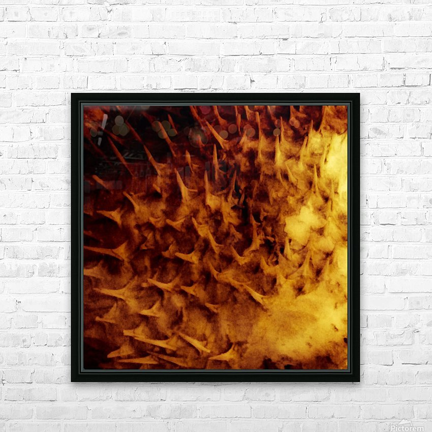 CURIOSITY - ORANGE HD Sublimation Metal print with Decorating Float Frame (BOX)