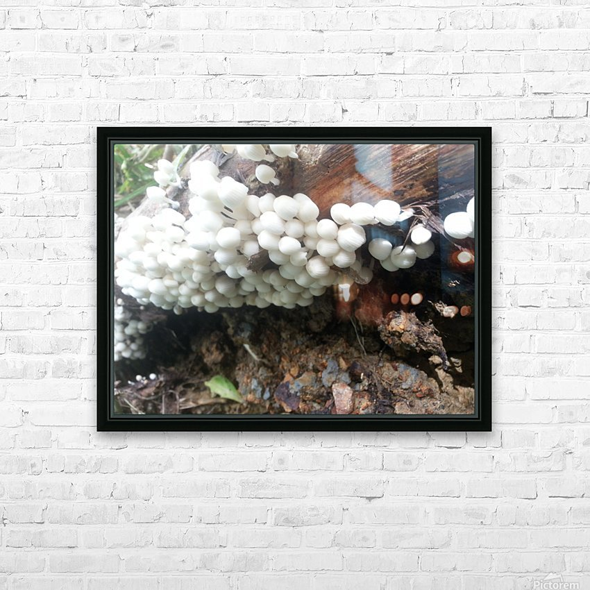 white mushrooms HD Sublimation Metal print with Decorating Float Frame (BOX)