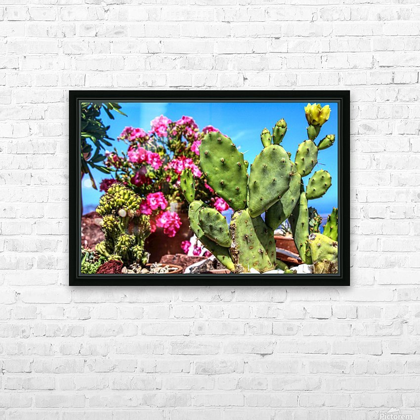 Cactus and colourful Flowers HD Sublimation Metal print with Decorating Float Frame (BOX)