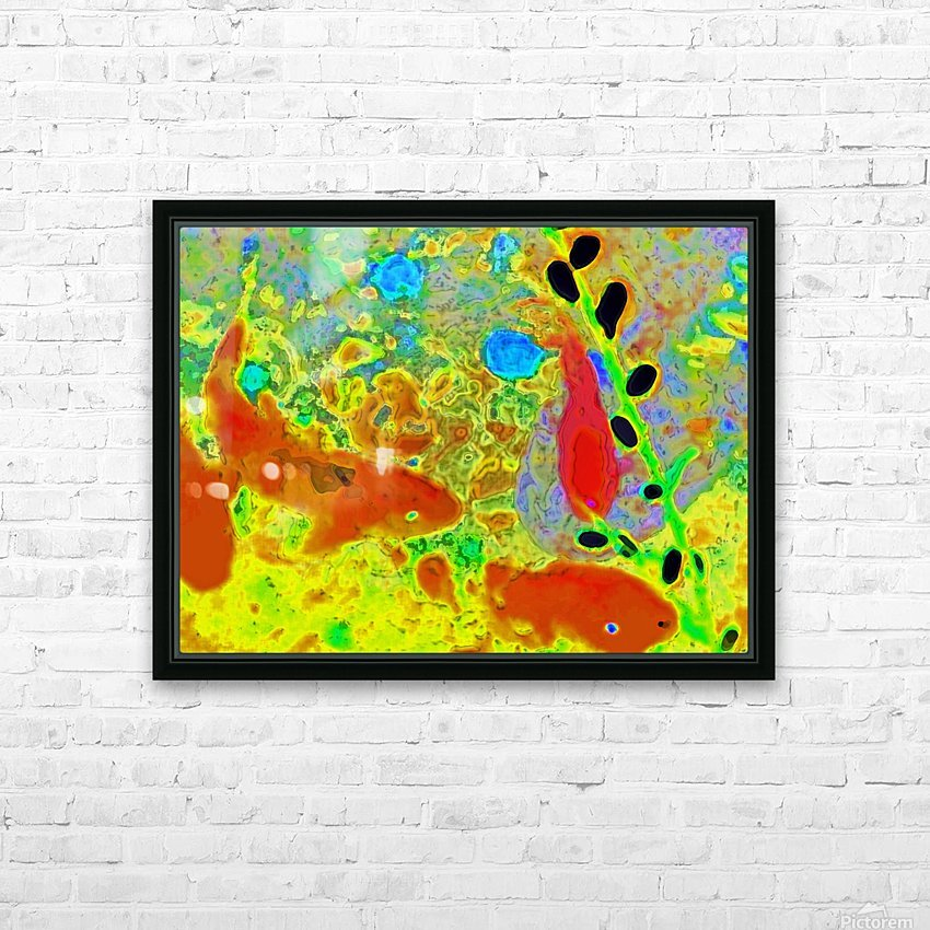 photo Koi Series  2 16 HD Sublimation Metal print with Decorating Float Frame (BOX)