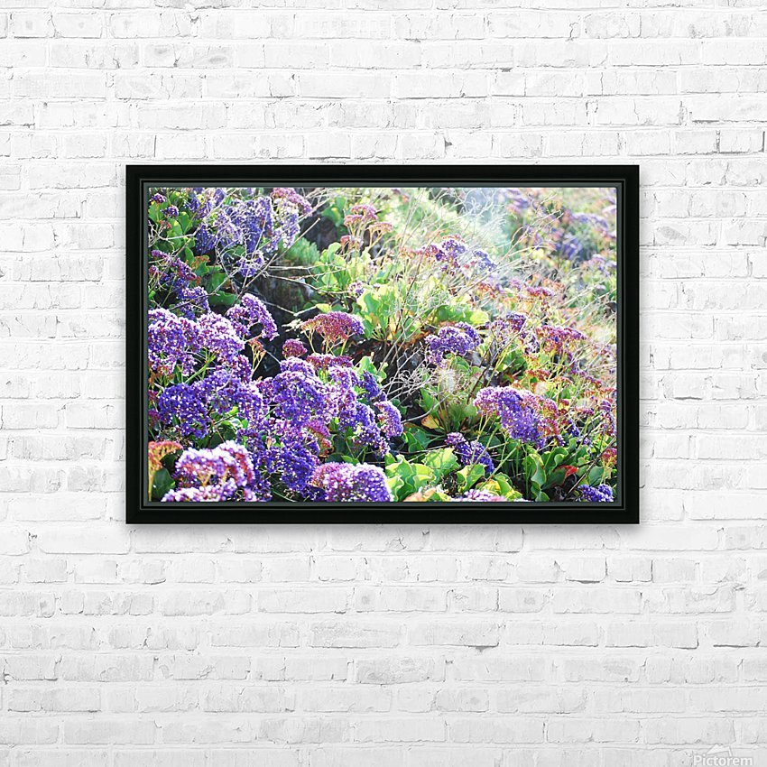 Purple Wild Flowers in Dana Point CA HD Sublimation Metal print with Decorating Float Frame (BOX)